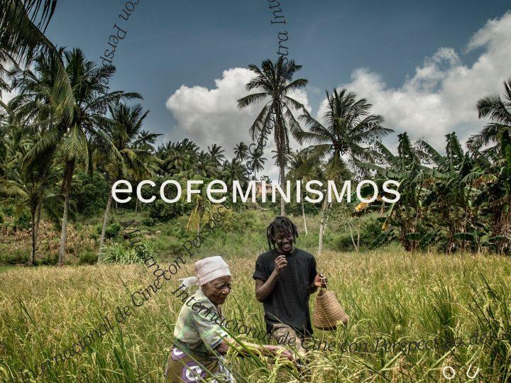 Selección Oficial 2021| Ecofeminismos